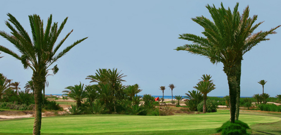 Stage Carte Verte 5 jours 02 heures au Golf Djerba