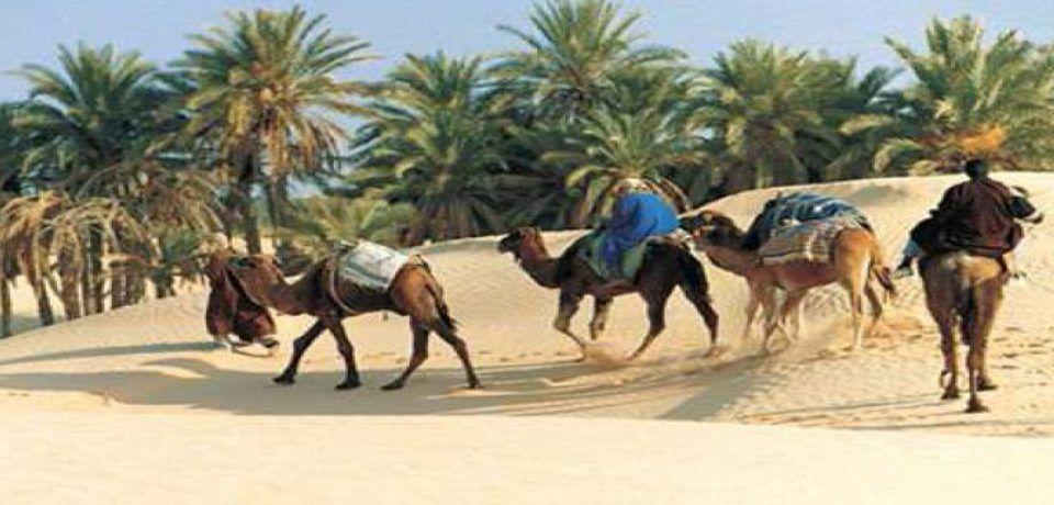 Hotel DOUZ & NAFTA  Tunisie