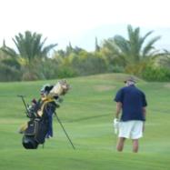 Le golf Citrus est dans un parfait état d'entretien