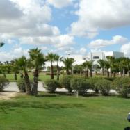 Golf Citrus 2 parcours La Foret et les oliviers