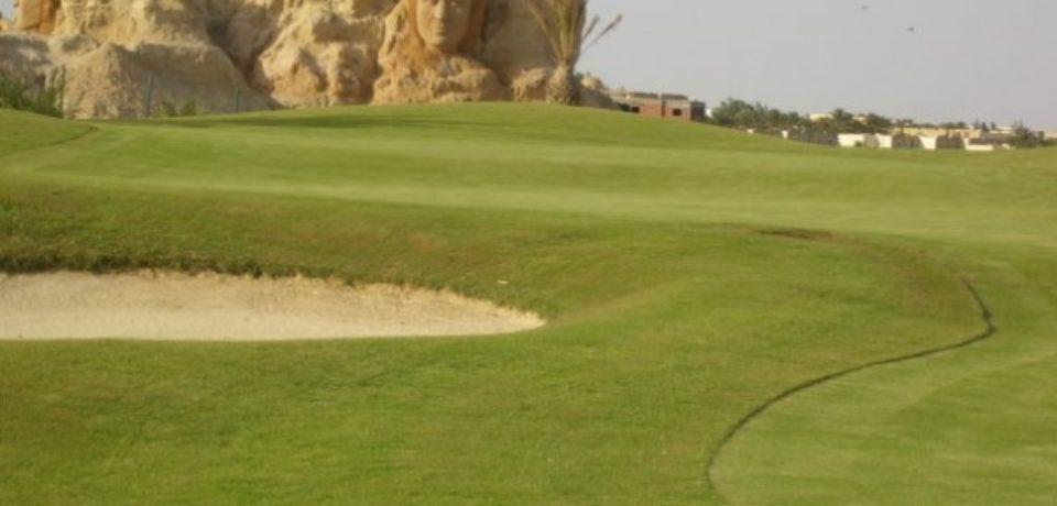 Stage découverte Golf Oasis Tozeur Tunisie
