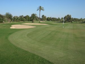 Green Fee Golf djerba
