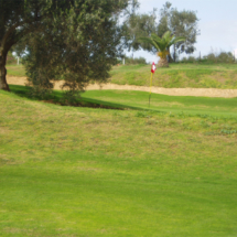 Stages et Tarifs Stage Golf Flamingo Course