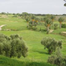 Golf Flamingo à Monastir