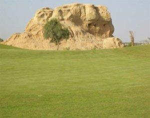 Carte Verte Golf Oasis Tozeur