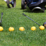 Les Acacias Parcours Djerba Golf Club