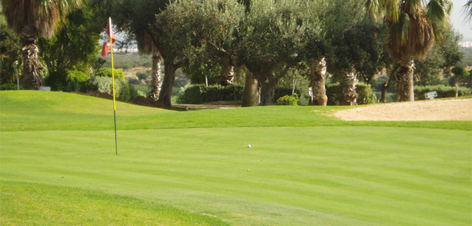 Stage de perfectionnement 5 jours, 03 heures au golf Flamingo Monastir