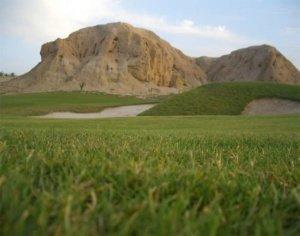 Green Fee Golf Oasis Tozeur