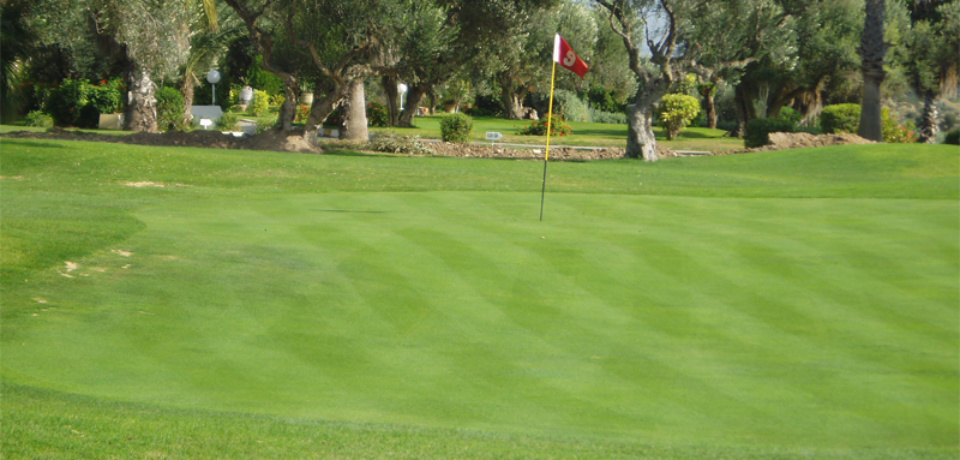 Stage d'initiation de 3 jours au golf Flamingo  Monastir Tunisie