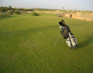 Perfectionnement Golf Oasis