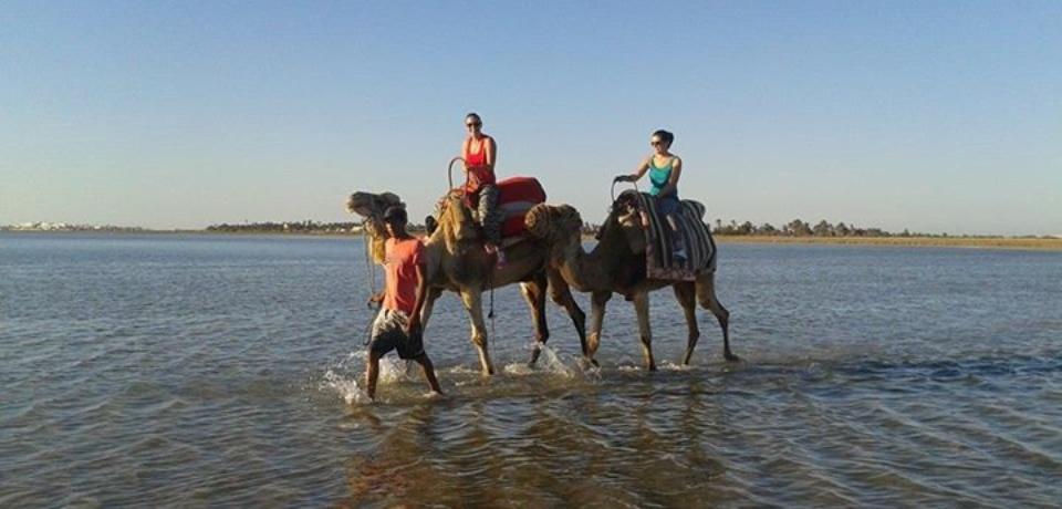Balades en Mer pour les groupes à Djerba en Tunisie