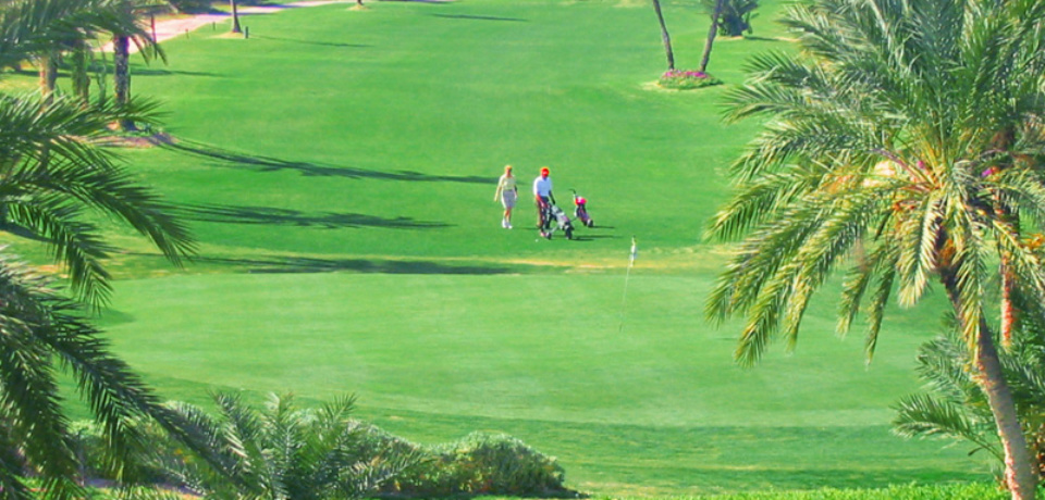 Réservation de Green Fee au Golf Club Djerba