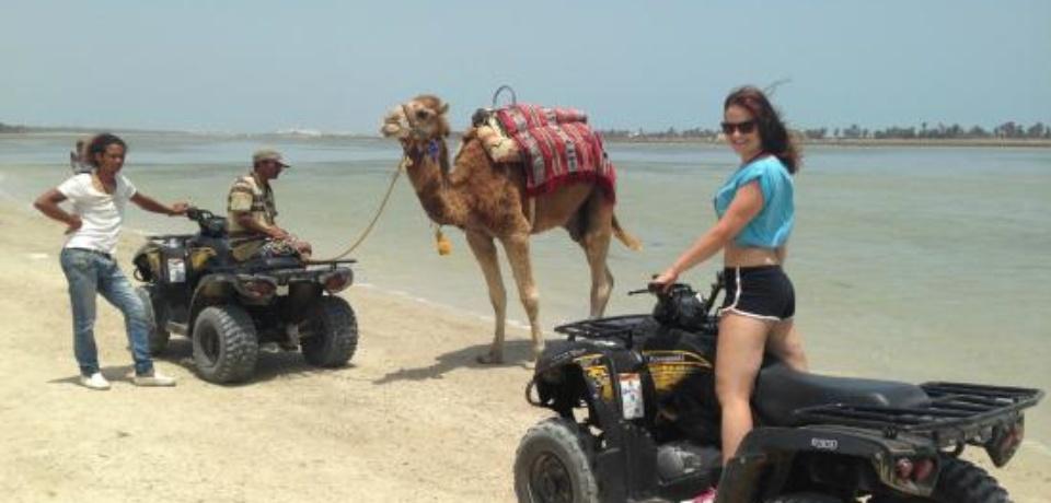 Quads pour les groupes qui séjournent à Tunis