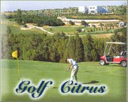 Fethi M'Hedbi Citrus Golf