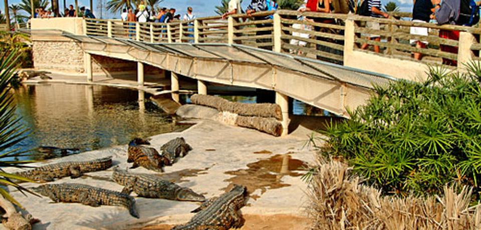 Parc d'attraction pour groupes a Djerba Tunisie