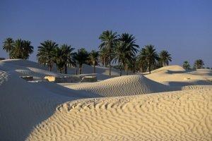 Découverte Golf Sud Tunisien