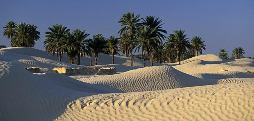 Hôtel pour groupe à Tozeur en Tunisie