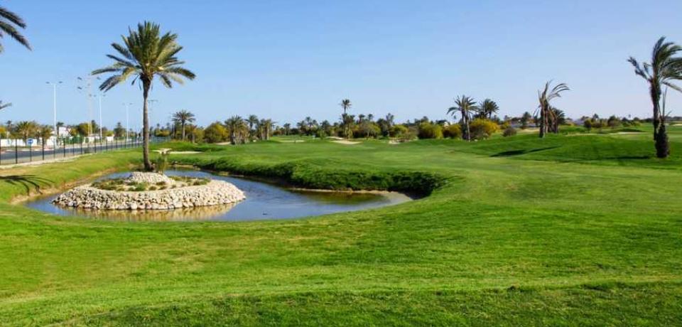 Réservation des stages de Golf au parcours Les Palmiers à Djerba Tunisie.