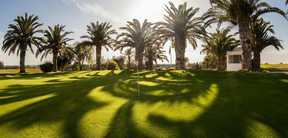 Réservation Tee-Time au Golf Yasmine Hammamet Tunisie