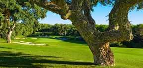 Réservation Stage, Cours et Leçons au Golf Valderrama à Cadix en Espagne