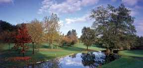Tarifs et Promotion Golf Real Club de Golf La Barganiza