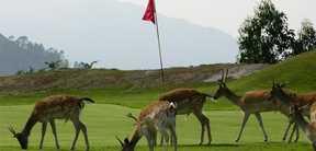 Réservation Green Fee au Golf Lauro à Malaga en Espagne