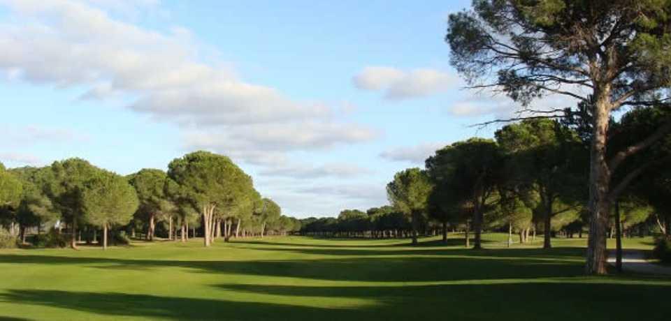Réservation Stage, Cours et Leçons au Golf Robinson Nobilis Belek en Turquie