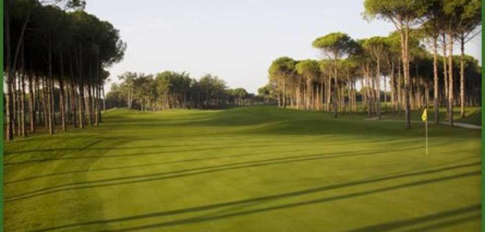 Réservation Green Fee au Golf Carya Antalya en Turquie