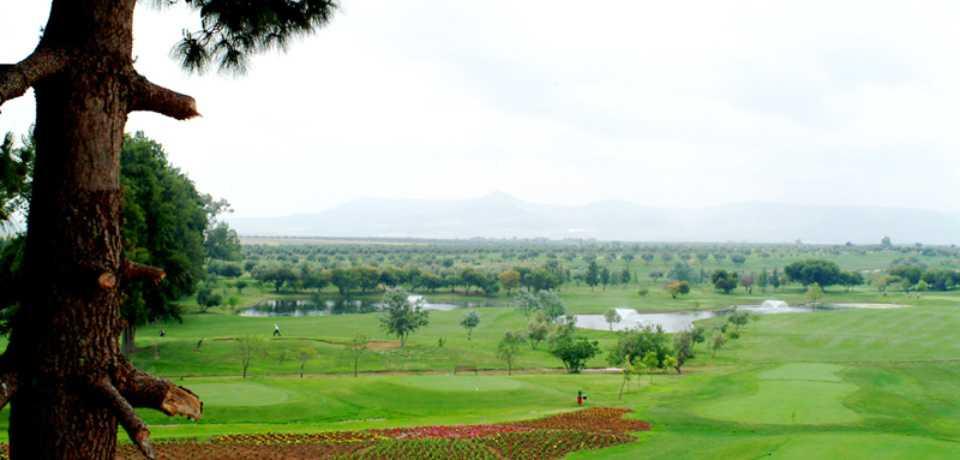 Réservation Stage, Cours et Leçons au Royal Golf Universitaire de Settat a Casablanca Maroc