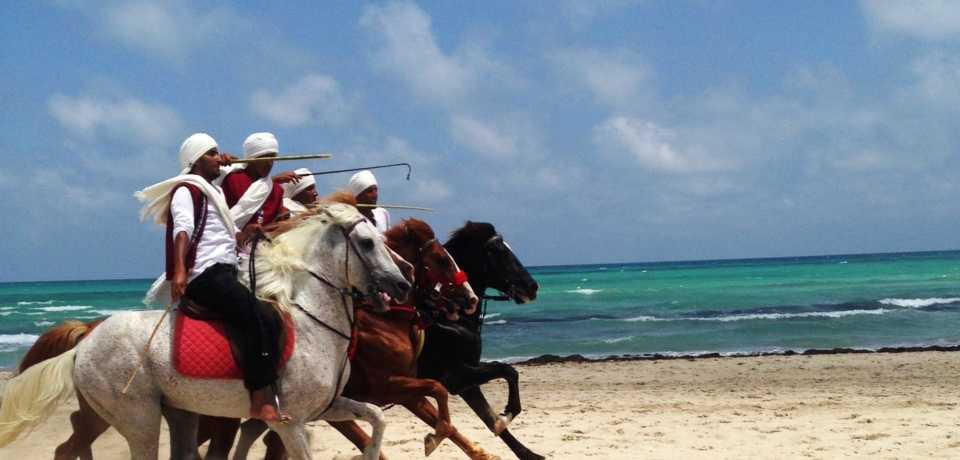 Groupes a Djerba Tunisie
