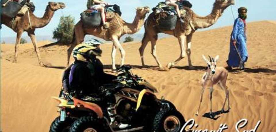Groupes a Tozeur Tunisie