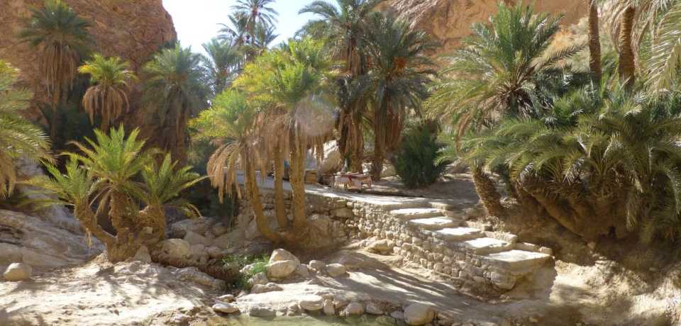 Promotion Excursion Circuit a Tunisie