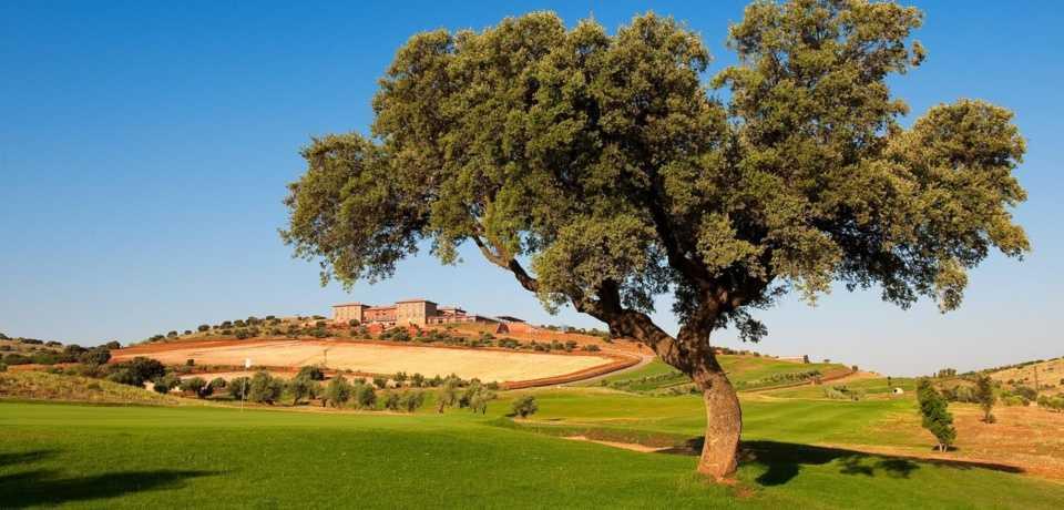 Golf à Castille la Manche en Espagne