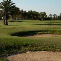 Réservation-des-stages-de-Golf-au-Palm-links-960x460