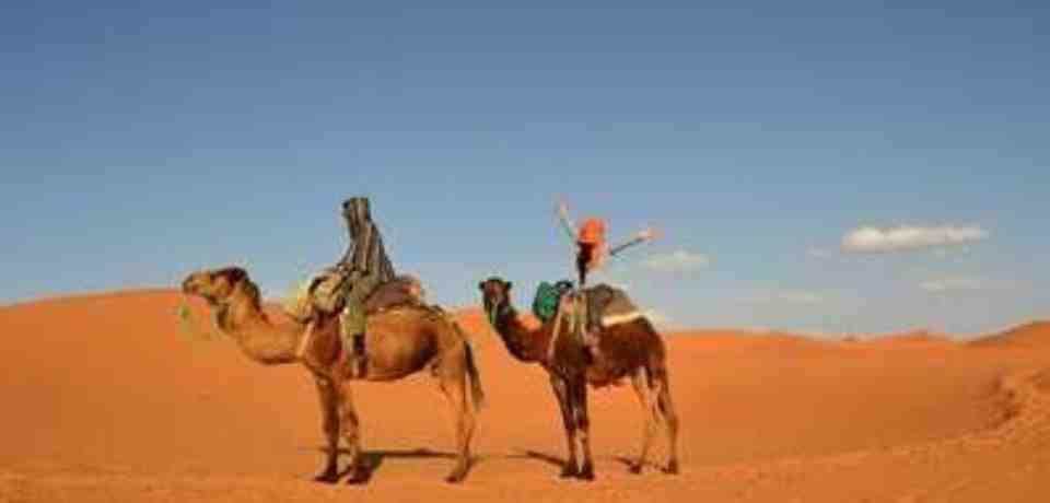 Divertissement en Tunisie