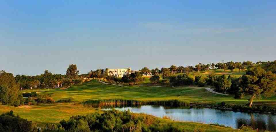 Golf Citrus Hammamet