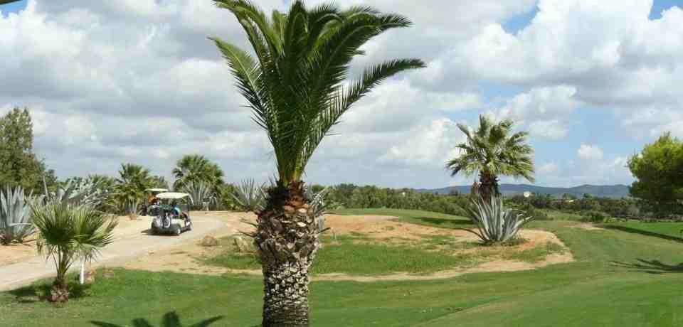 3 jours de Cours Avancés de Golf à Hammamet
