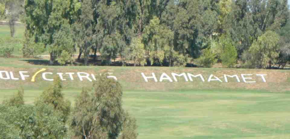 Hautes et Basses Saisons à Hammamet
